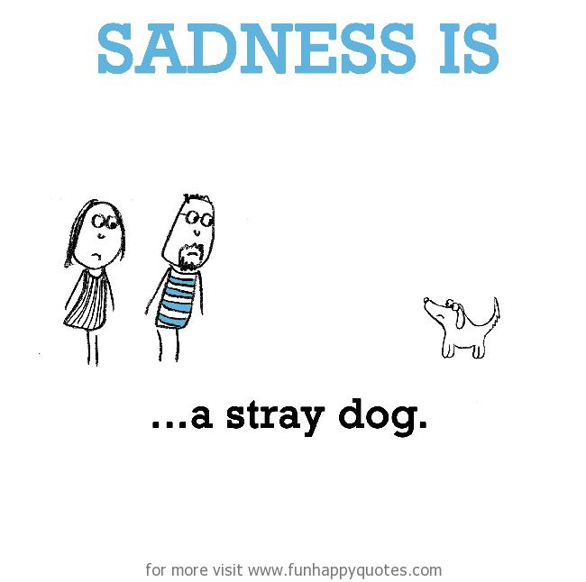 Sadness is, a stray dog.