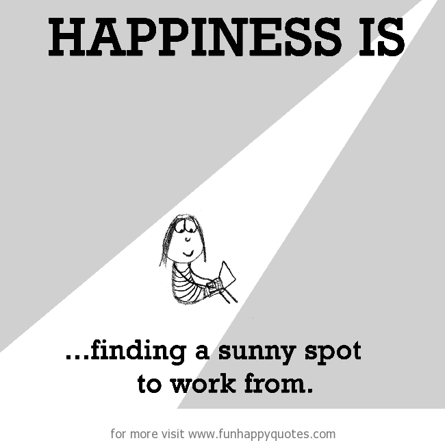Happiness is, finding a sunny spot to work from.