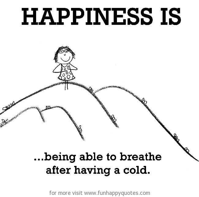 Happiness is, being able to breathe after having a cold.