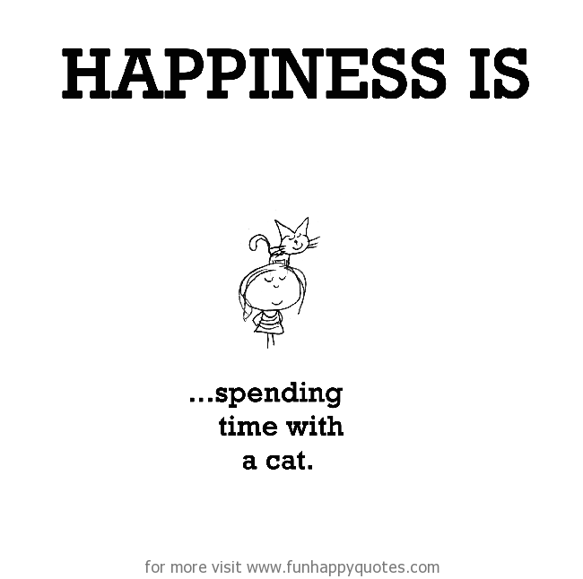 Happiness is, spending time with a cat.