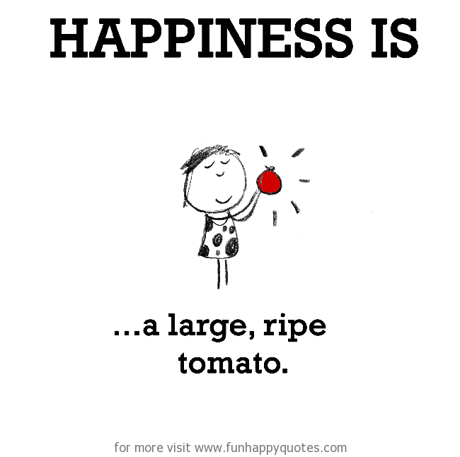 Happiness is, a large, ripe tomato.