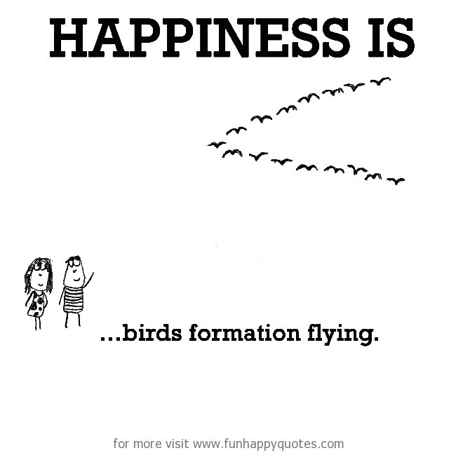 Happiness is, birds formation flying.