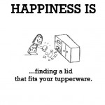 Happiness is, finding a lid that fits your tupperware.