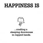 Happiness is, cradling a sleeping door mouse in cupped hands.