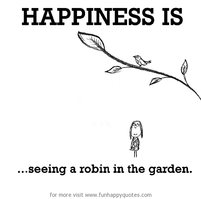 Happiness is, seeing a robin in the garden.