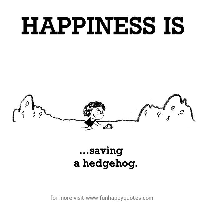 Happiness is, saving a hedgehog.