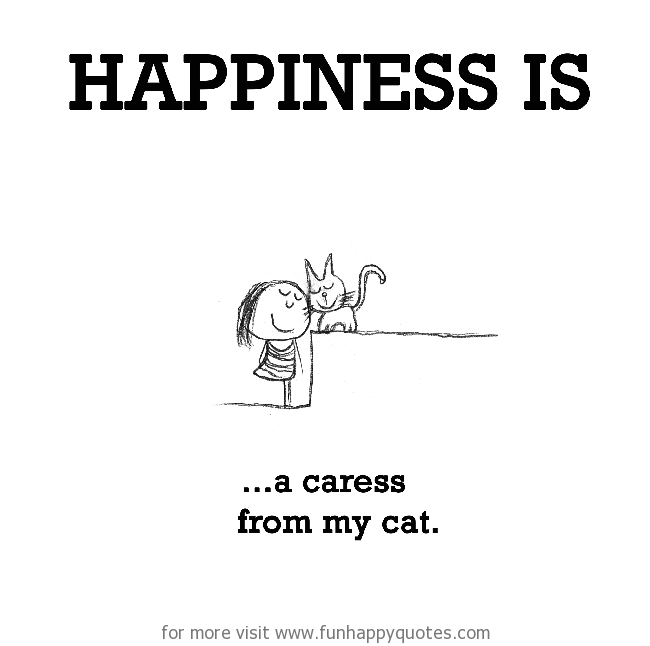 Happiness is, a caress from my cat.