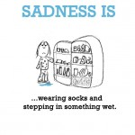 Sadness is, wearing socks and stepping in something wet.