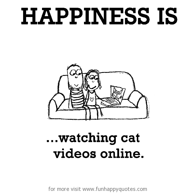 Happiness is, watching cat videos online.