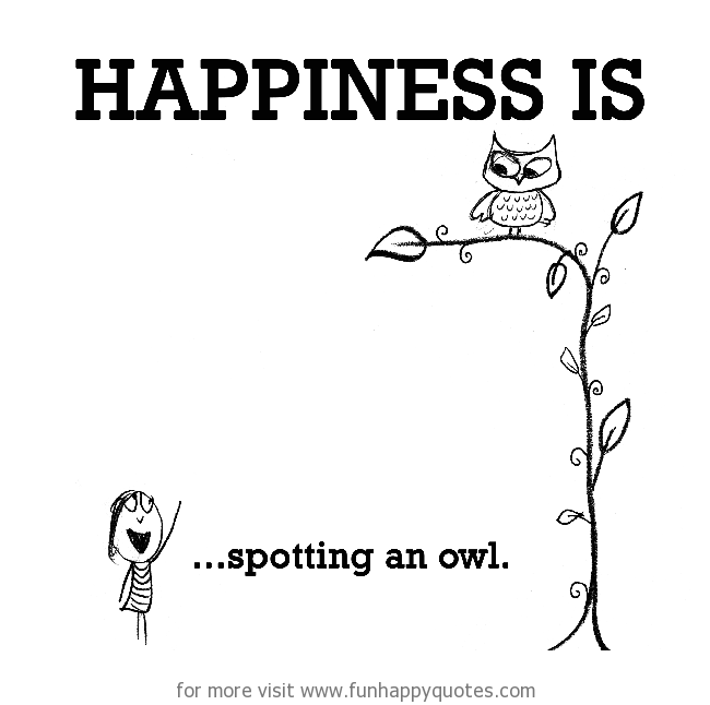 Happiness is, spotting an owl.