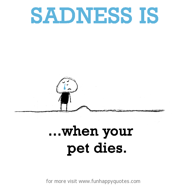 Sadness is, when your pet dies.