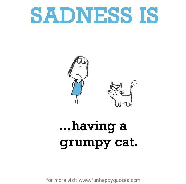 Sadness is, having a grumpy cat.