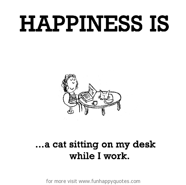 Happiness is, a cat sitting on my desk while I work.