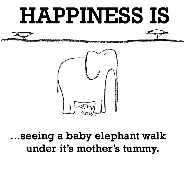 Happiness is, seeing a baby elephant.