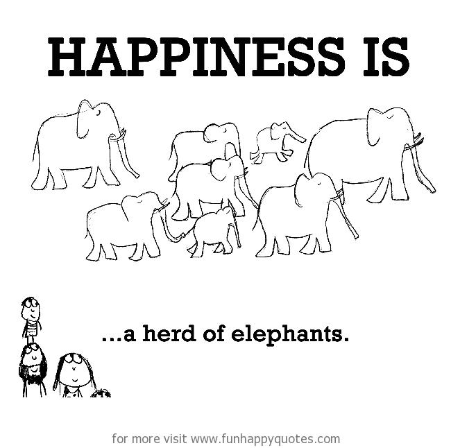 Happiness is, a herd of elephants.