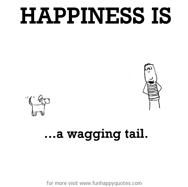 Happiness is, a wagging tail.