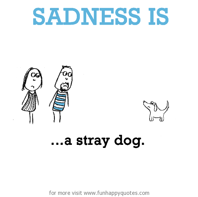 Sadness is, a stray dog.