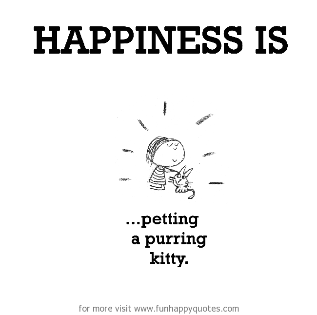 Happiness is, petting a purring kitty.